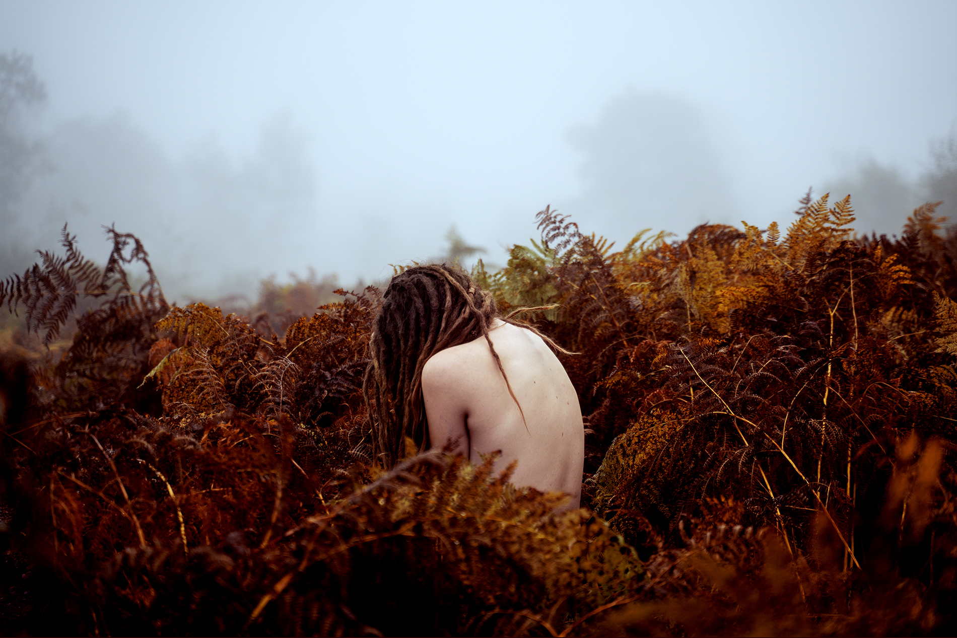 An emotive self portrait showing a woman's naked back inbetween ferns, with fog in the background.